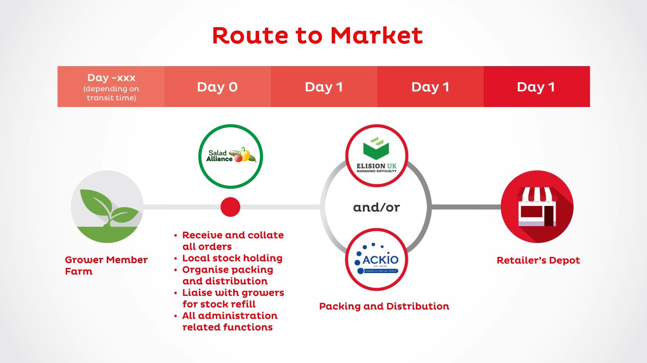The Route to Market