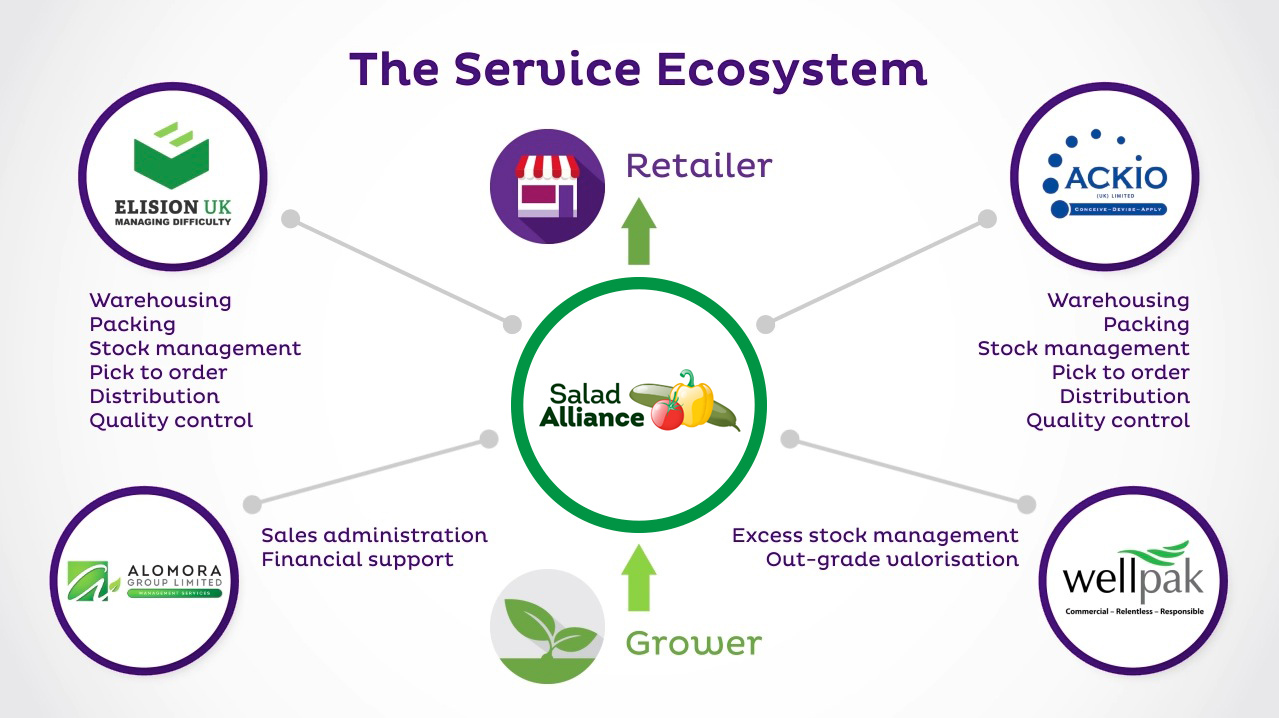 The Service Ecosystem